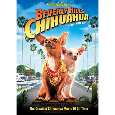 Nice wallpapers Beverly Hills Chihuahua 400x400px