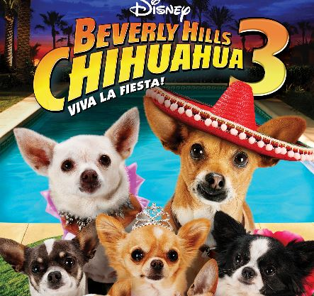 HD Quality Wallpaper | Collection: Movie, 443x417 Beverly Hills Chihuahua