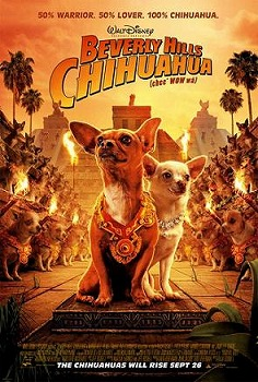 Nice wallpapers Beverly Hills Chihuahua 236x350px