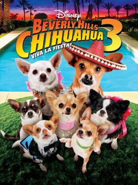 273x364 > Beverly Hills Chihuahua Wallpapers
