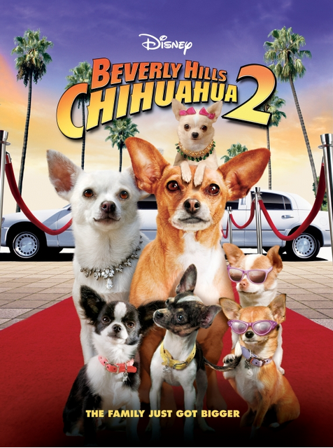 HQ Beverly Hills Chihuahua Wallpapers | File 698.4Kb