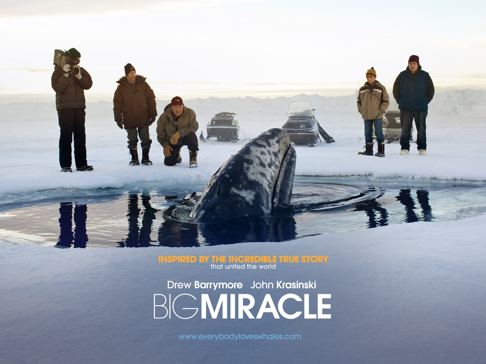 Amazing Big Miracle Pictures & Backgrounds