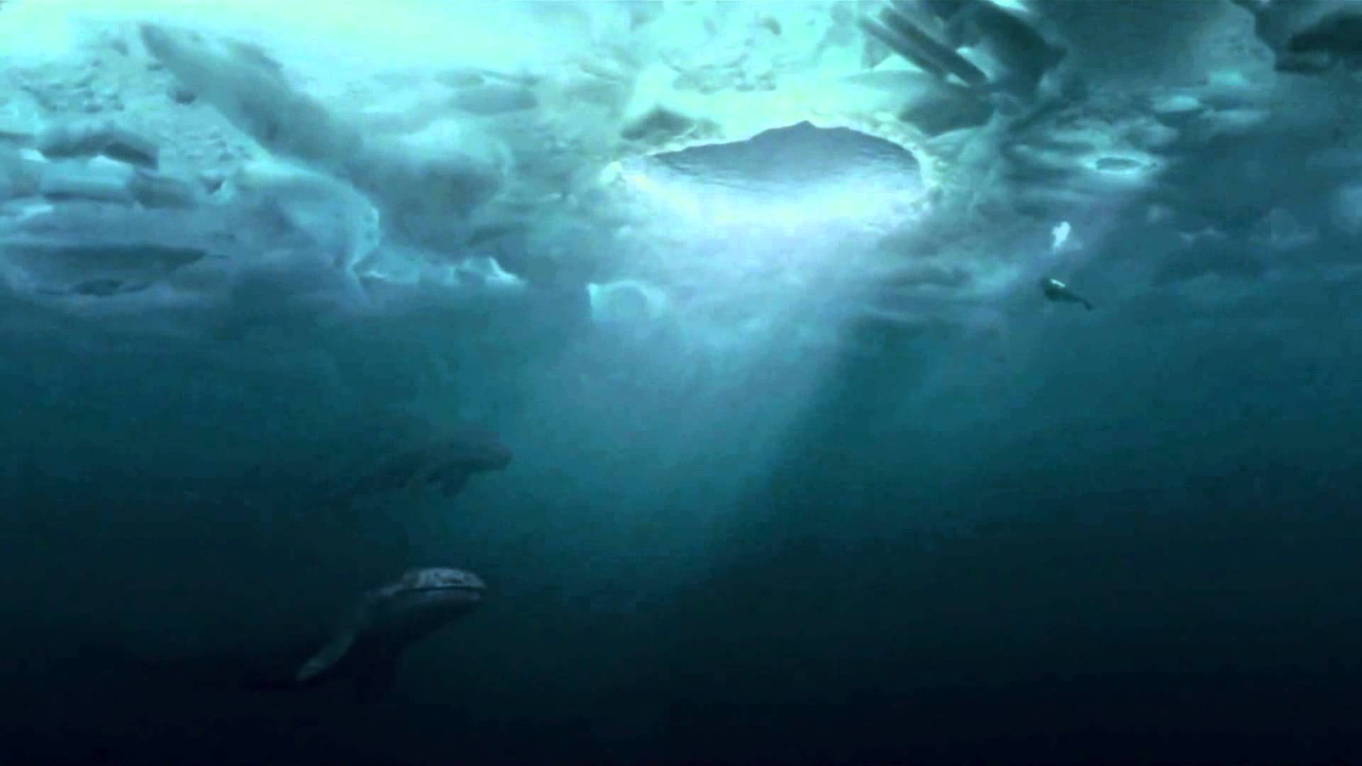 Images of Big Miracle | 1920x1080