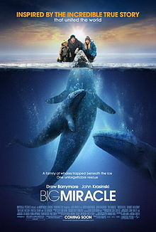 High Resolution Wallpaper | Big Miracle 220x326 px
