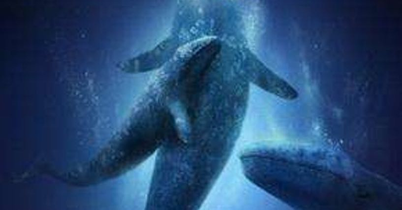 Big Miracle Backgrounds, Compatible - PC, Mobile, Gadgets| 817x427 px
