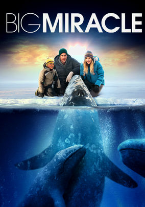 Big Miracle Pics, Movie Collection