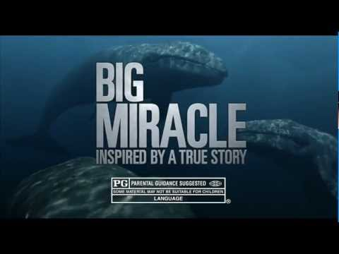 Big Miracle High Quality Background on Wallpapers Vista