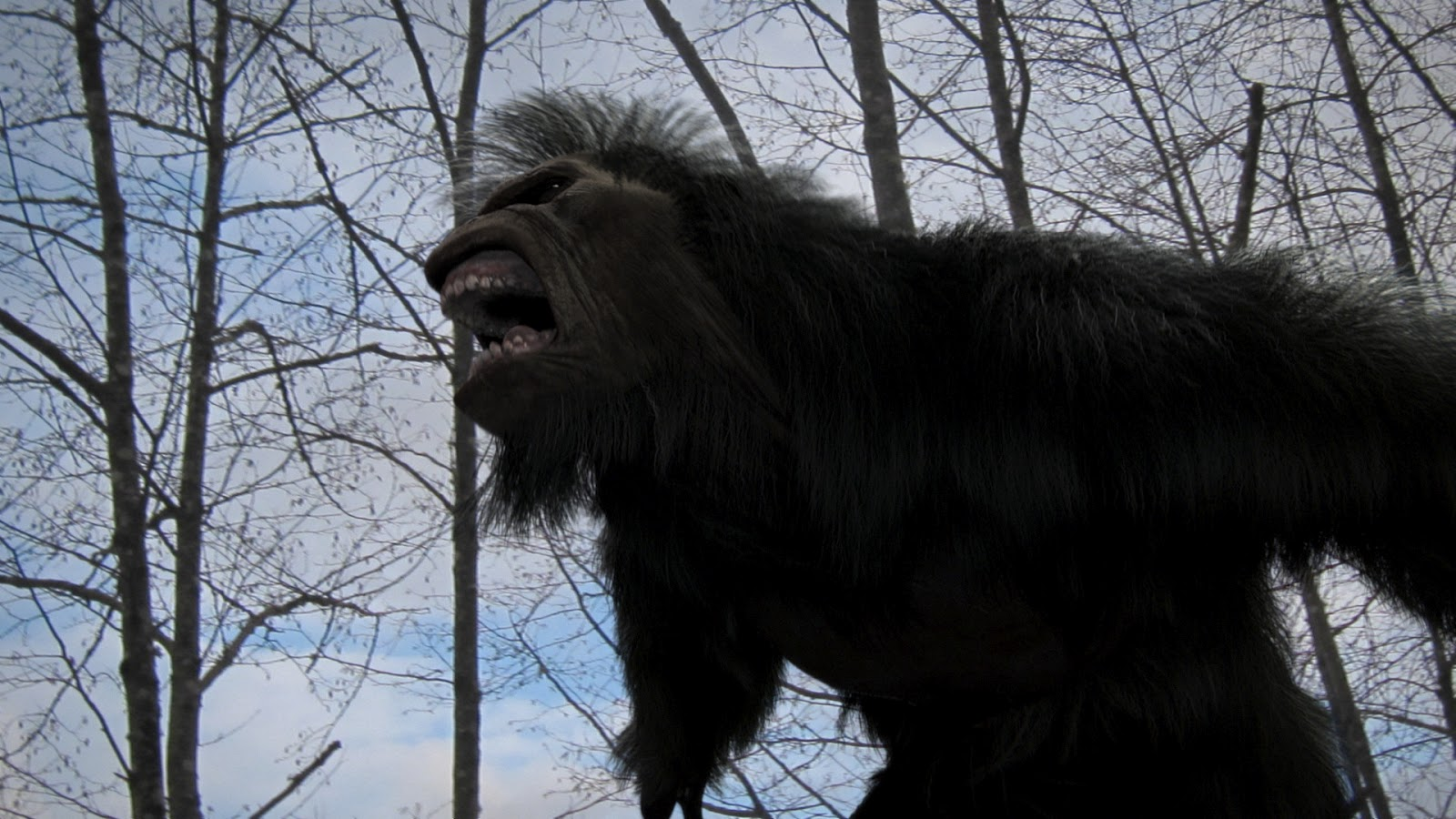 Amazing Bigfoot: The Lost Coast Tapes Pictures & Backgrounds