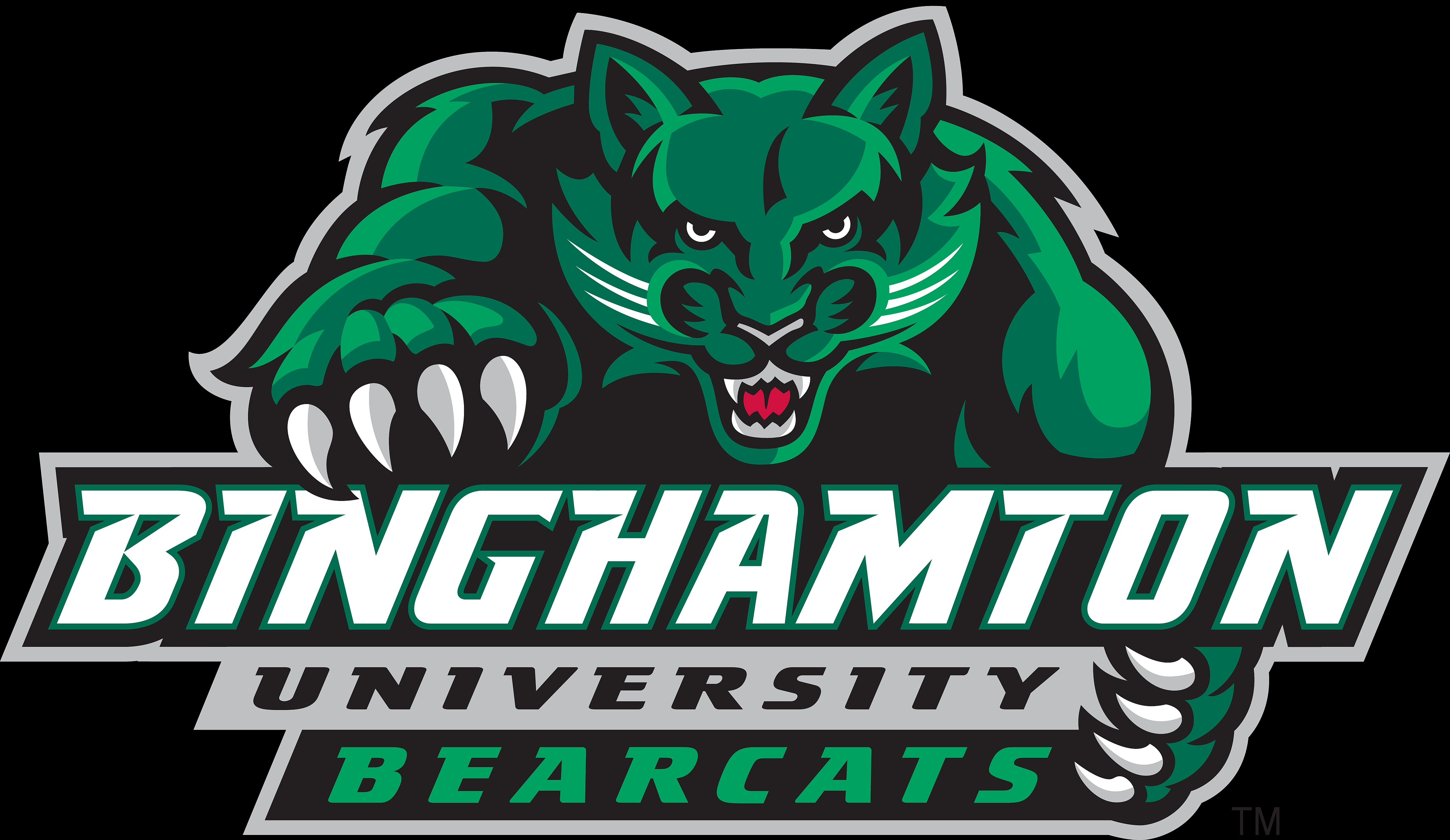 High Resolution Wallpaper | Binghamton University Bearcats 4550x2636 px