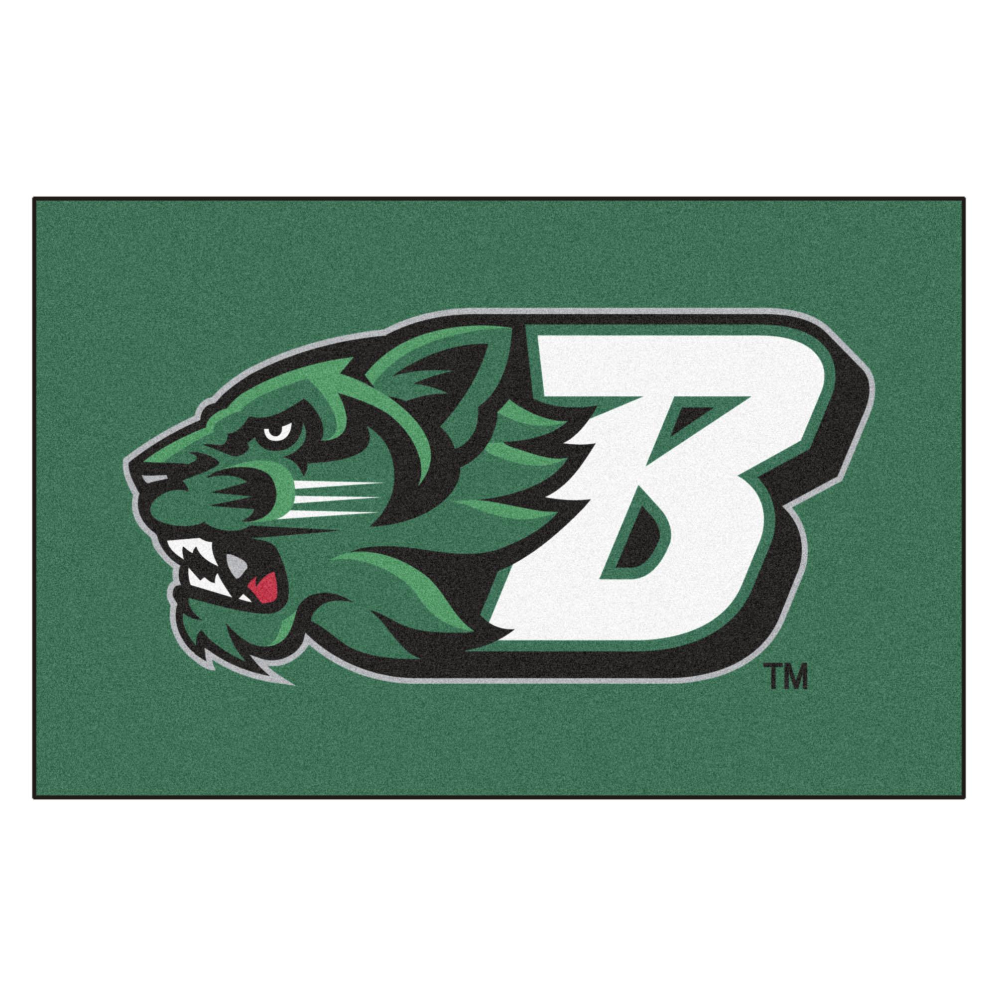 High Resolution Wallpaper | Binghamton University Bearcats 2000x2000 px