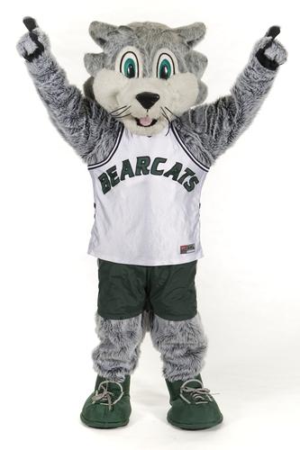 Nice Images Collection: Binghamton University Bearcats Desktop Wallpapers