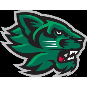 Images of Binghamton University Bearcats | 300x300