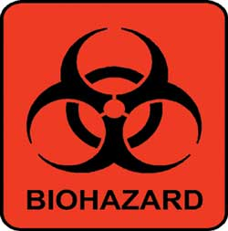 250x253 > Biohazard Wallpapers