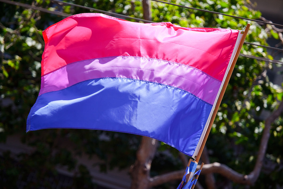 Bisexual Pride Flag #1