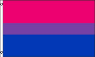 Bisexual Pride Flag Backgrounds, Compatible - PC, Mobile, Gadgets| 333x200 px