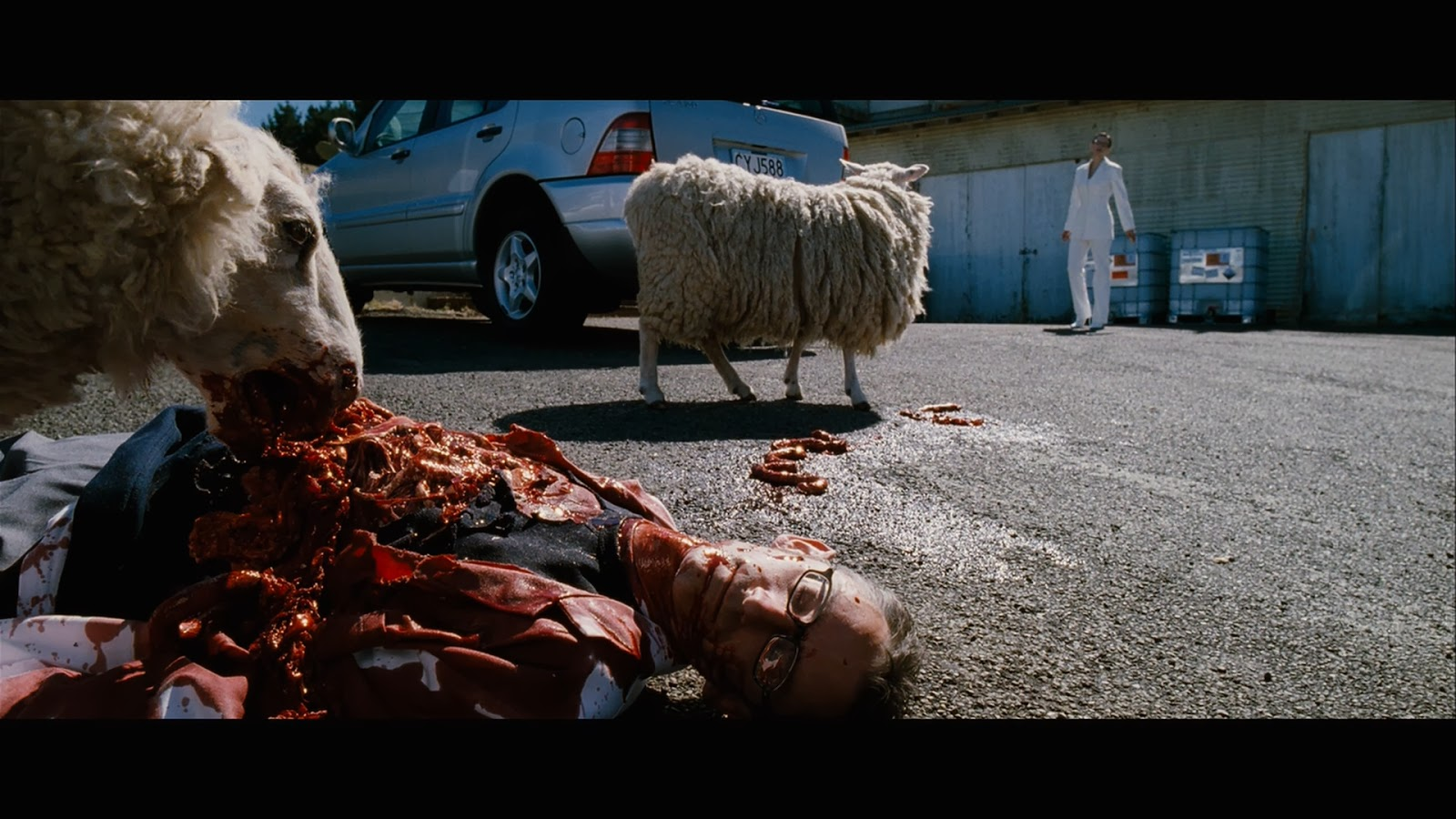 Amazing Black Sheep (2006) Pictures & Backgrounds