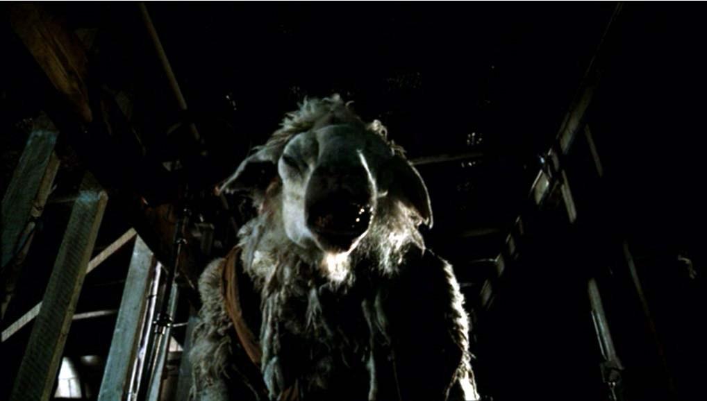 Black Sheep (2006) Pics, Movie Collection