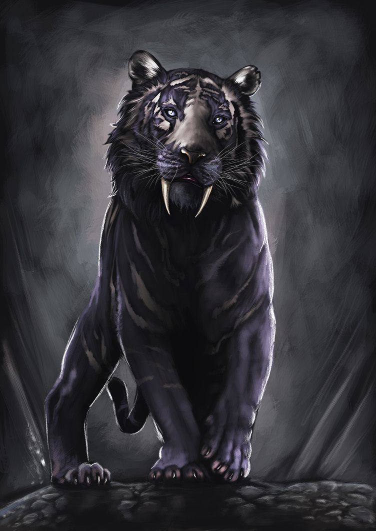 Most Viewed Black Tiger Wallpapers 4k Wallpapers