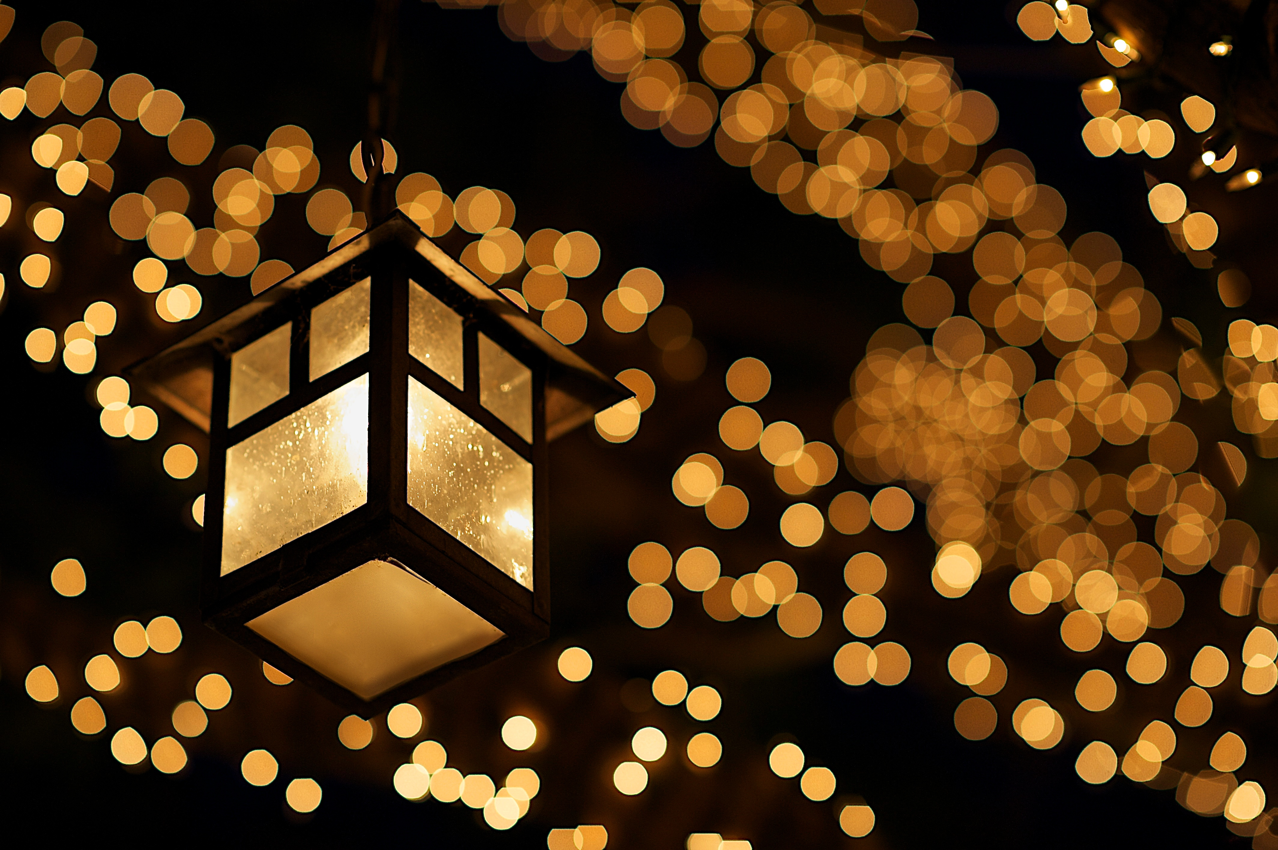 Amazing Bokeh Pictures & Backgrounds