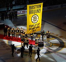 Nice wallpapers Boston Bruins 220x206px