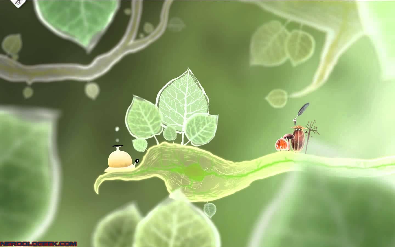 Nice Images Collection: Botanicula Desktop Wallpapers