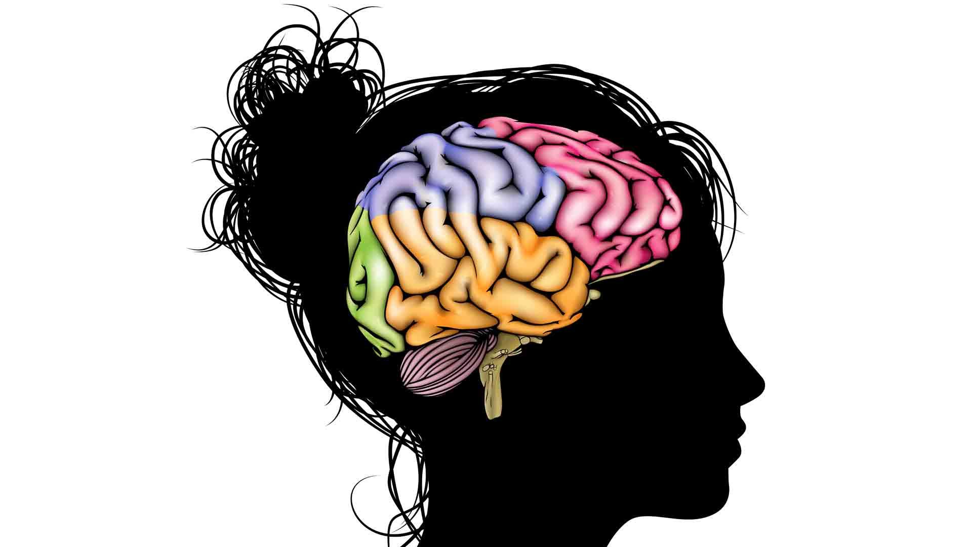Brain #6