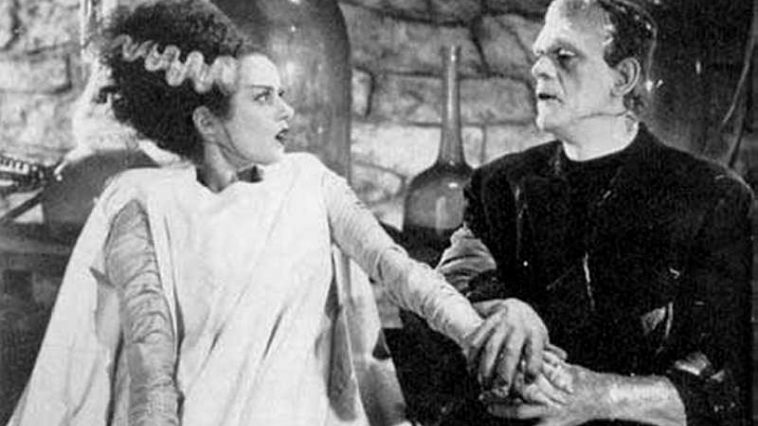 Bride Of Frankenstein  High Quality Background on Wallpapers Vista