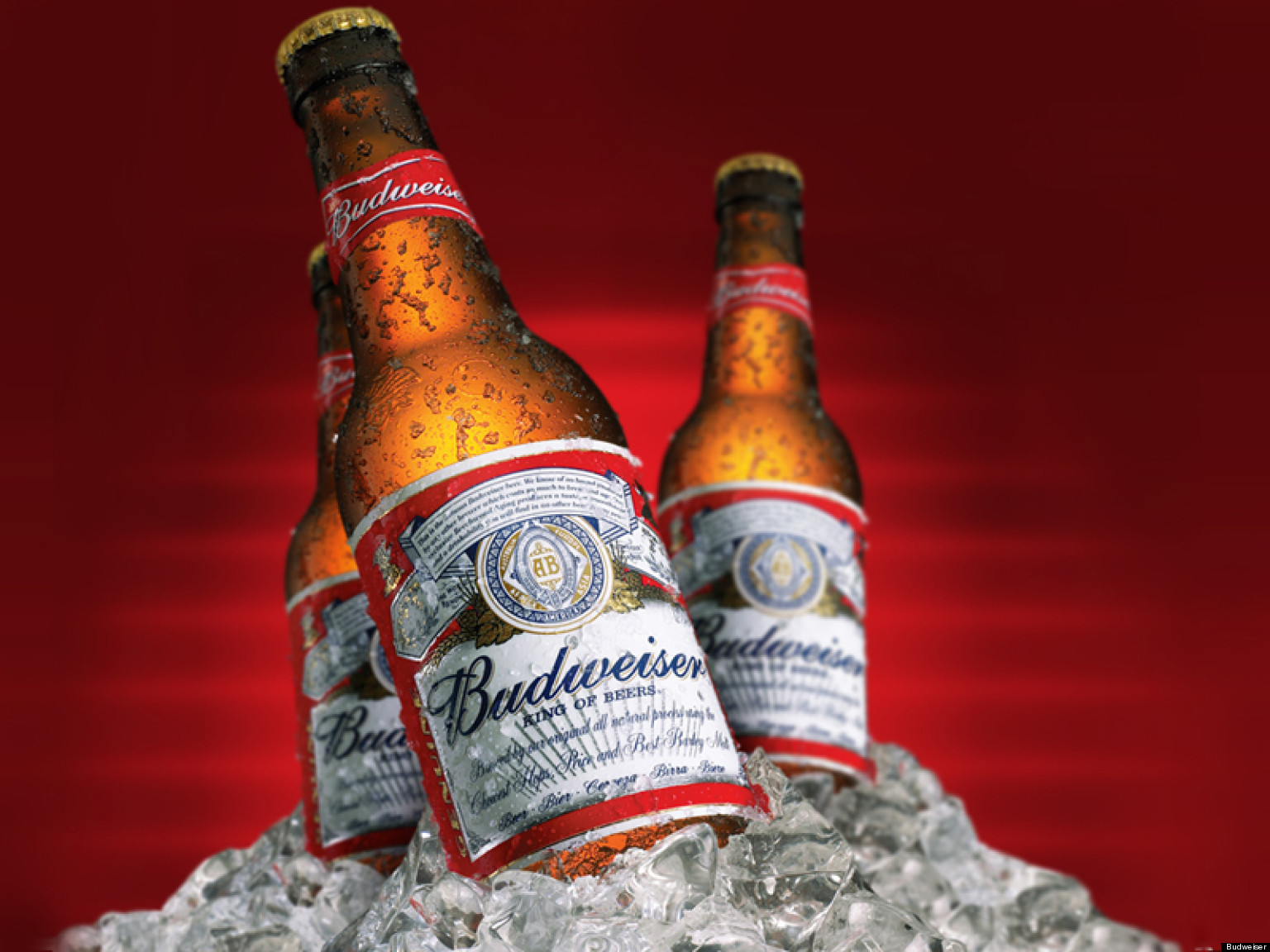 HQ Budweiser Wallpapers | File 329.67Kb