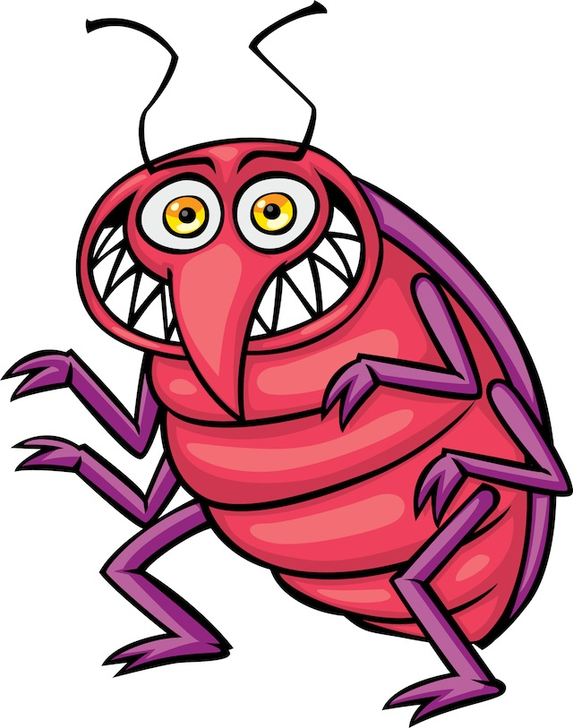 Bug HD wallpapers, Desktop wallpaper - most viewed