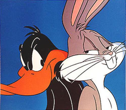 HD Quality Wallpaper | Collection: Cartoon, 500x437 Bugs And Daffy