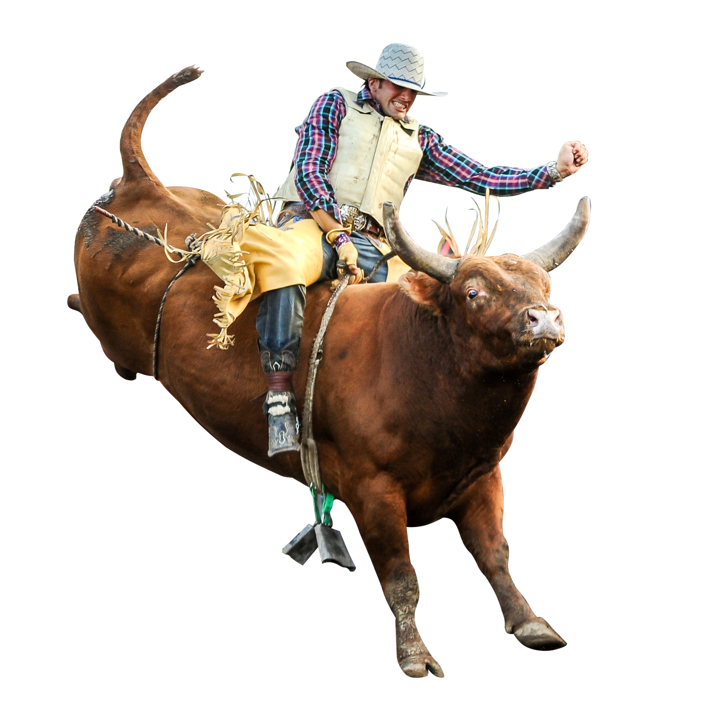 HD Quality Wallpaper | Collection: Sports, 2476x2512 Bullriding