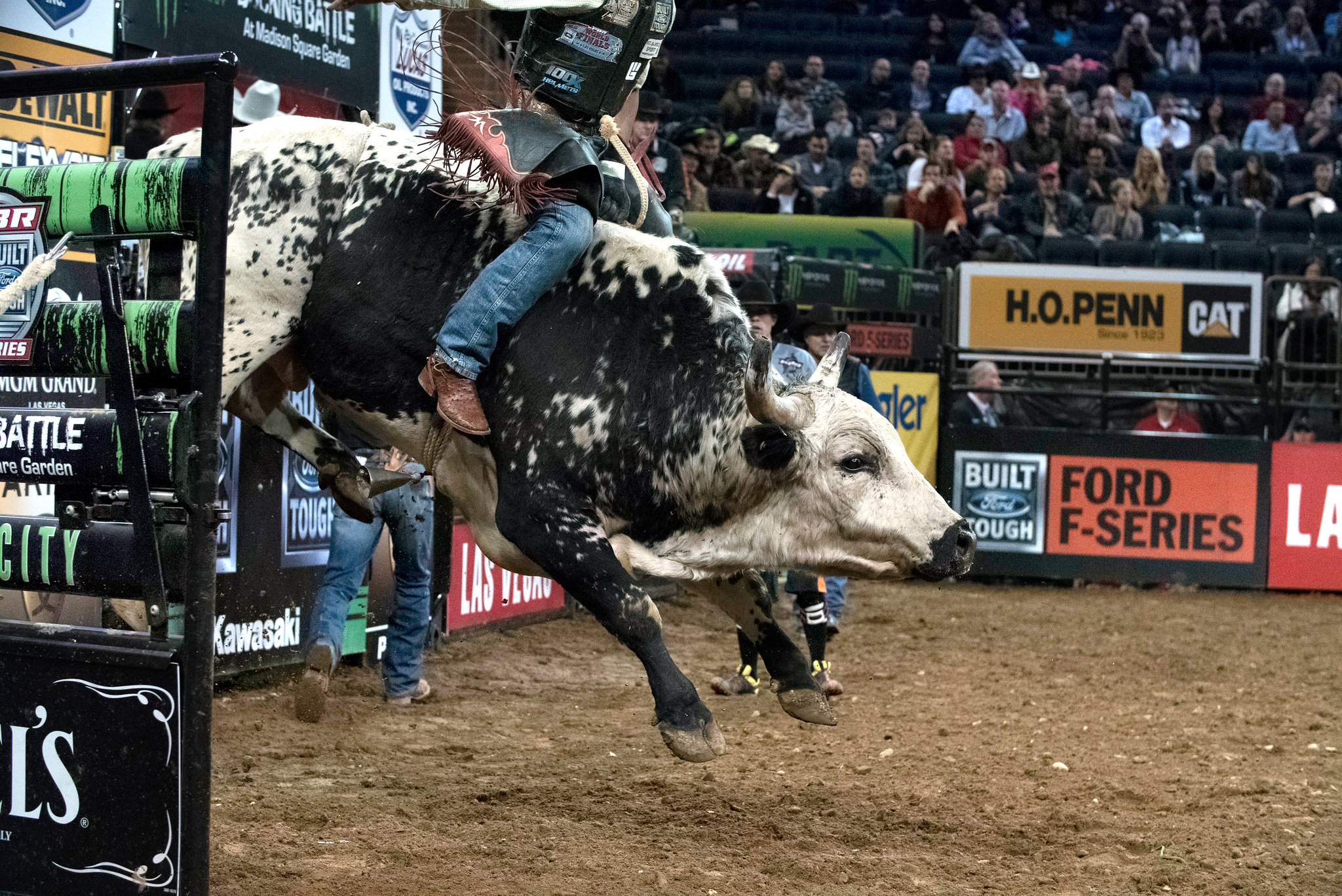 HD Quality Wallpaper | Collection: Sports, 2048x1367 Bullriding