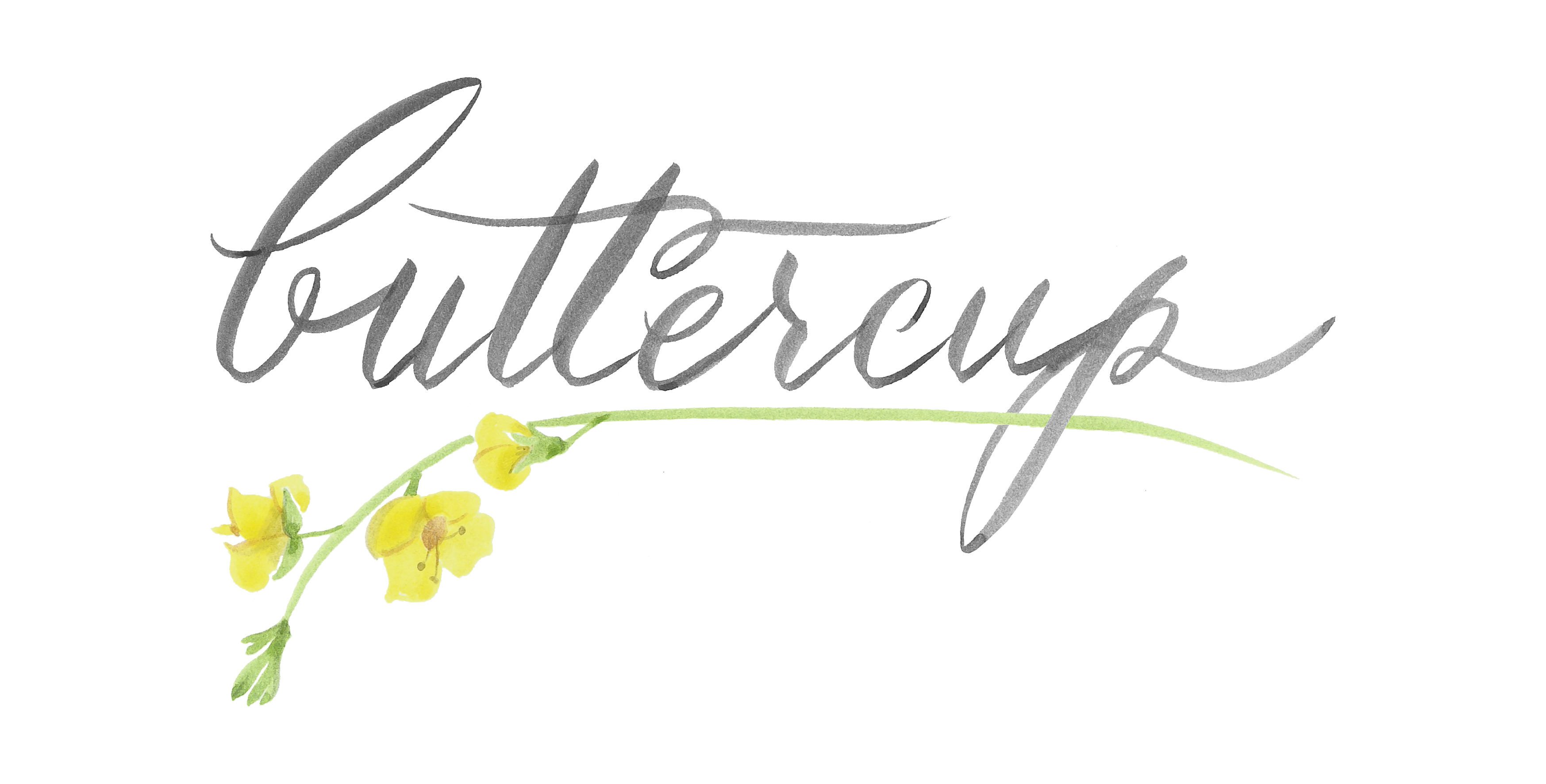 HQ Buttercup Wallpapers | File 1150.39Kb
