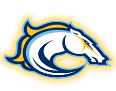 Calgary Mustangs Pics, Sports Collection