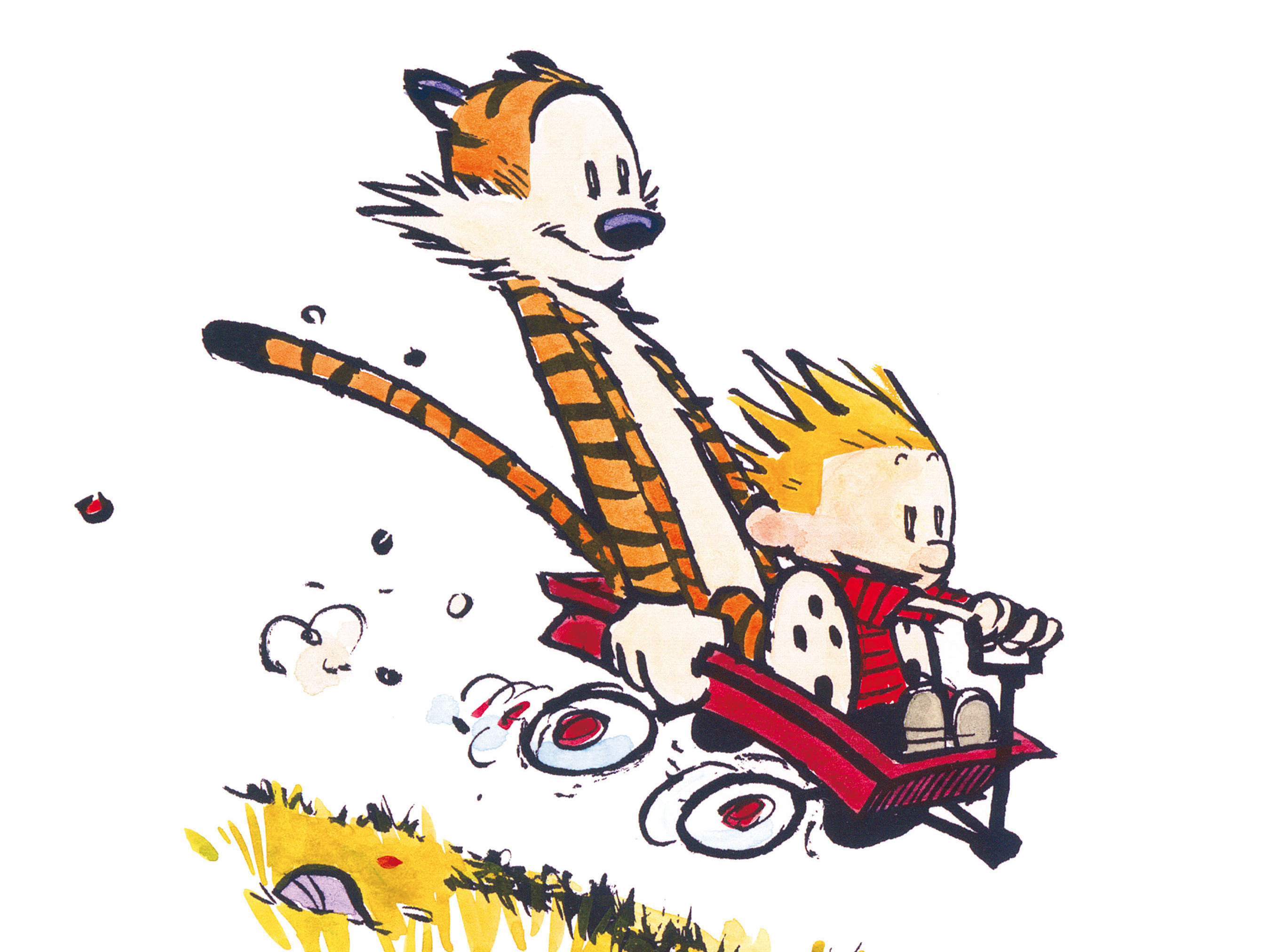 HD Quality Wallpaper | Collection: Comics, 2700x2025 Calvin & Hobbes