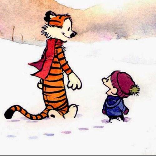 Calvin & Hobbes Pics, Comics Collection