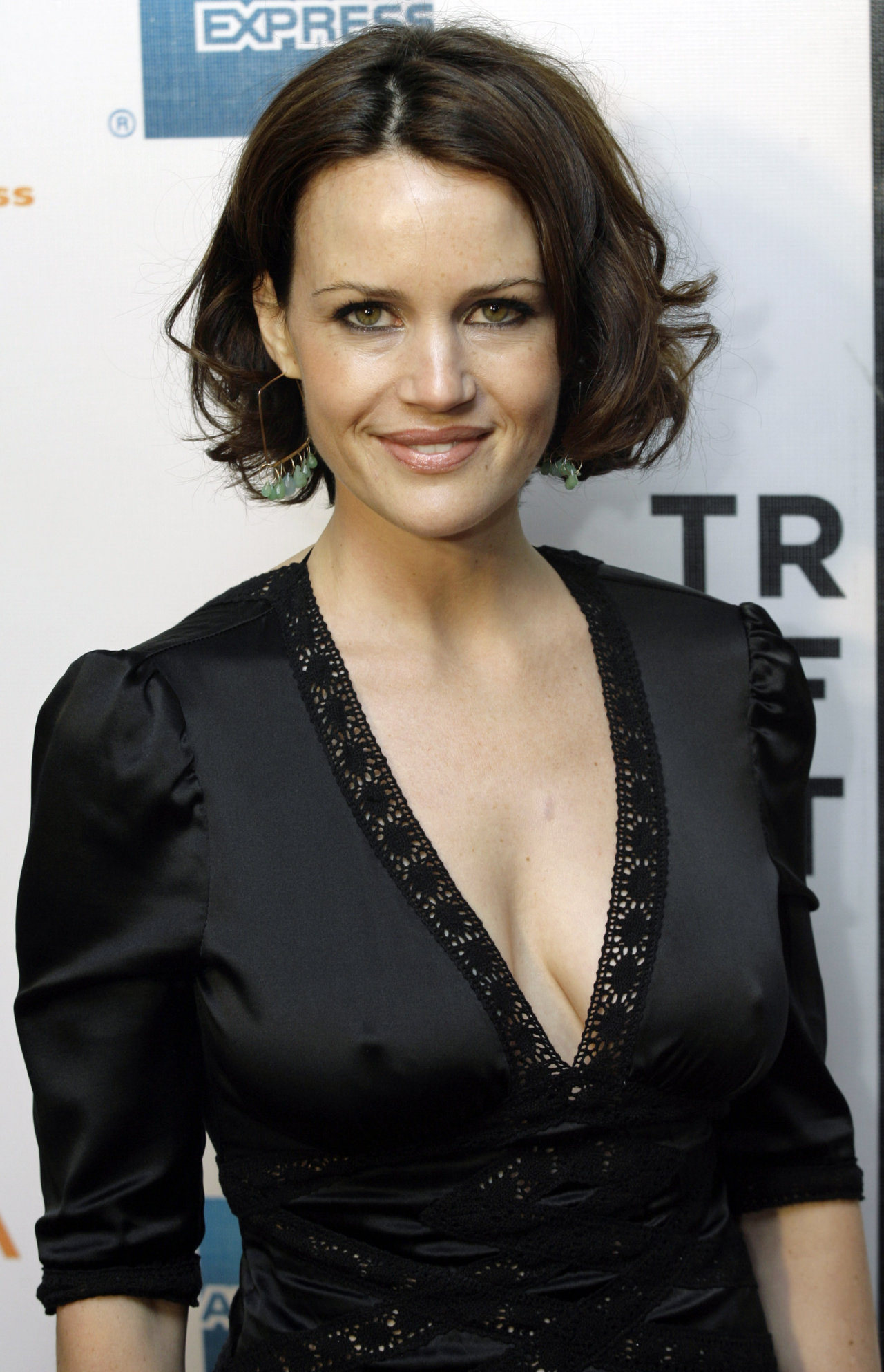 Carla Gugino Pics, Celebrity Collection