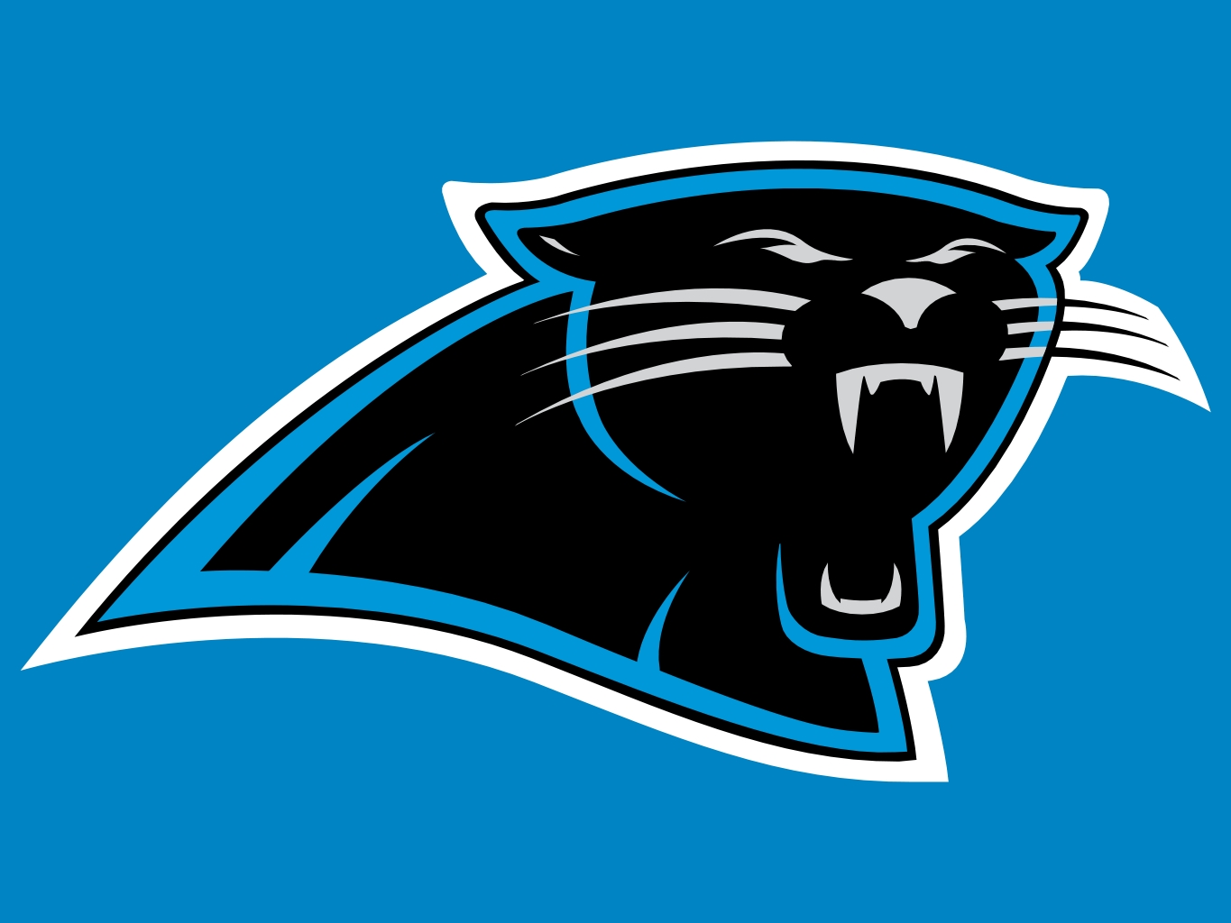 Carolina Panthers Pics, Sports Collection