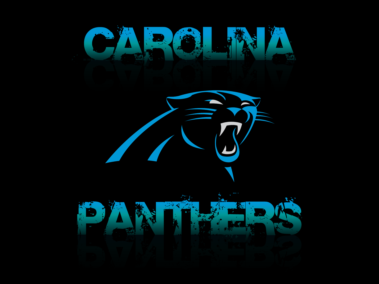 Nice wallpapers Carolina Panthers 1600x1200px