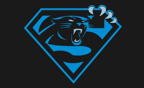 Carolina Panthers Backgrounds, Compatible - PC, Mobile, Gadgets| 564x346 px
