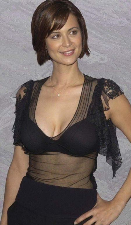 Nice wallpapers Catherine Bell 450x772px