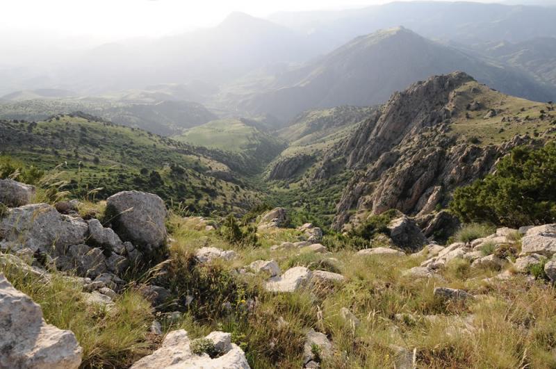 Caucasus #24