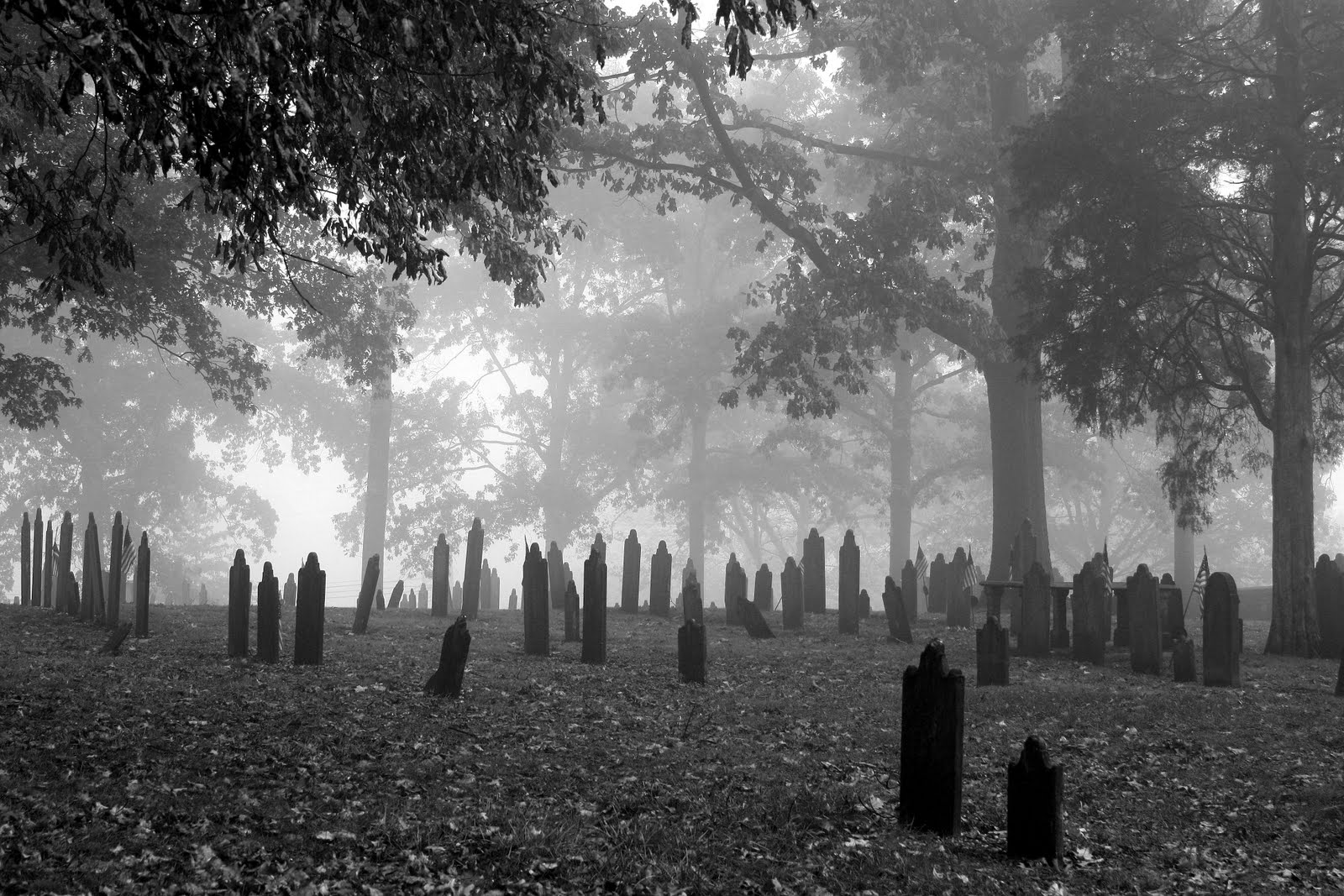 Cemetery Backgrounds, Compatible - PC, Mobile, Gadgets| 1600x1067 px