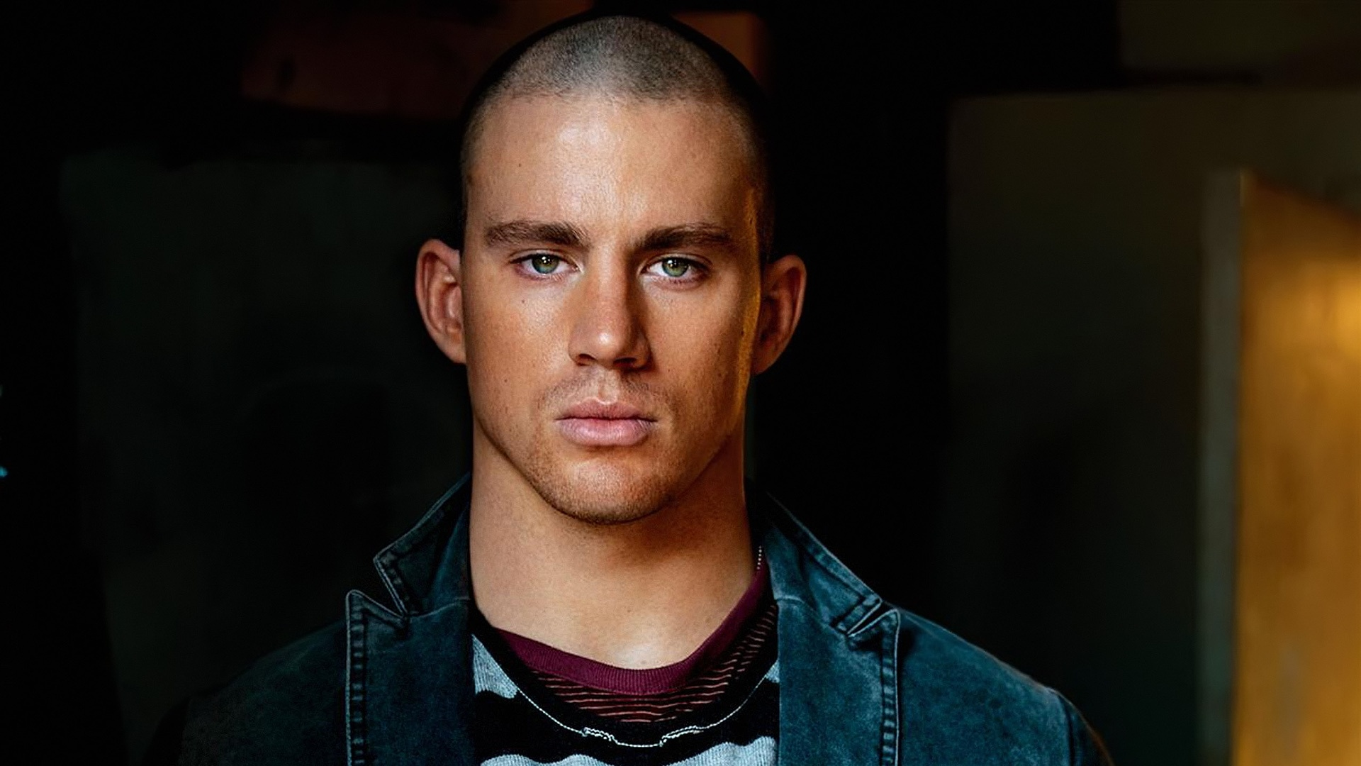 Channing Tatum Pics, Celebrity Collection