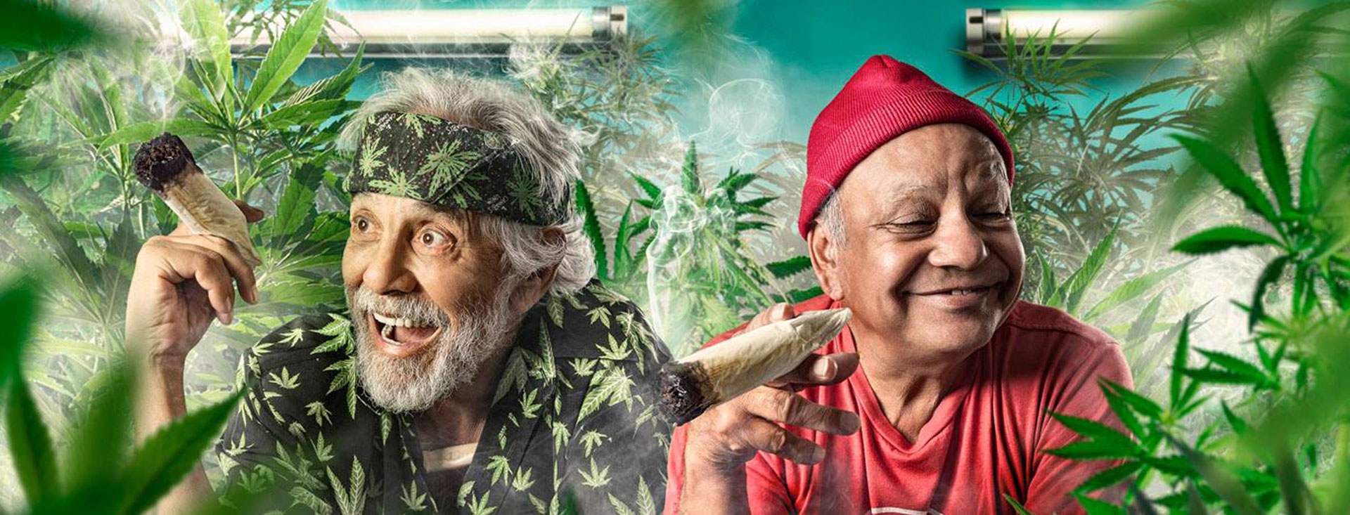 Cheech And Chong Backgrounds, Compatible - PC, Mobile, Gadgets| 1920x733 px
