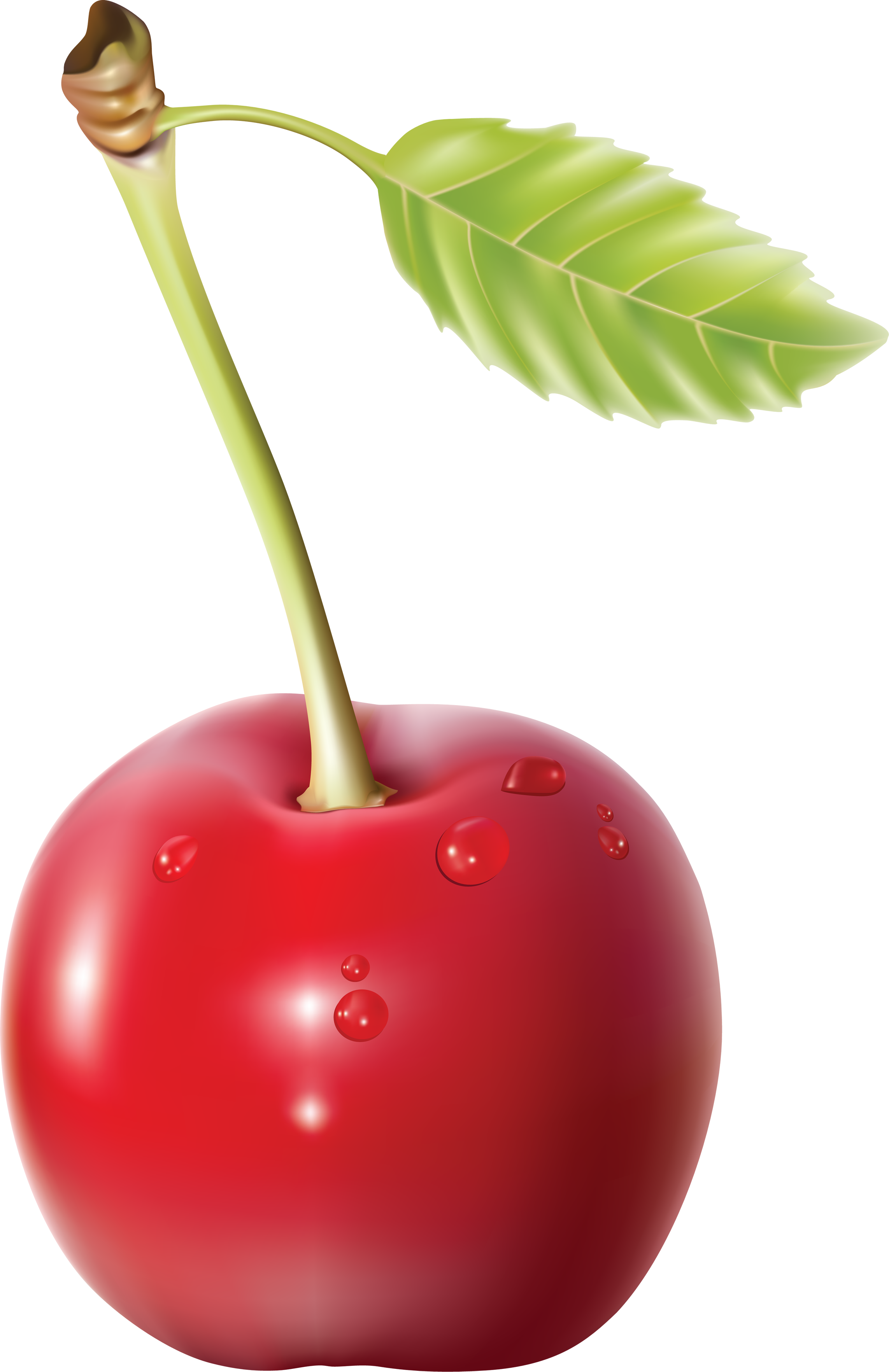 Nice Images Collection: Cherry Desktop Wallpapers