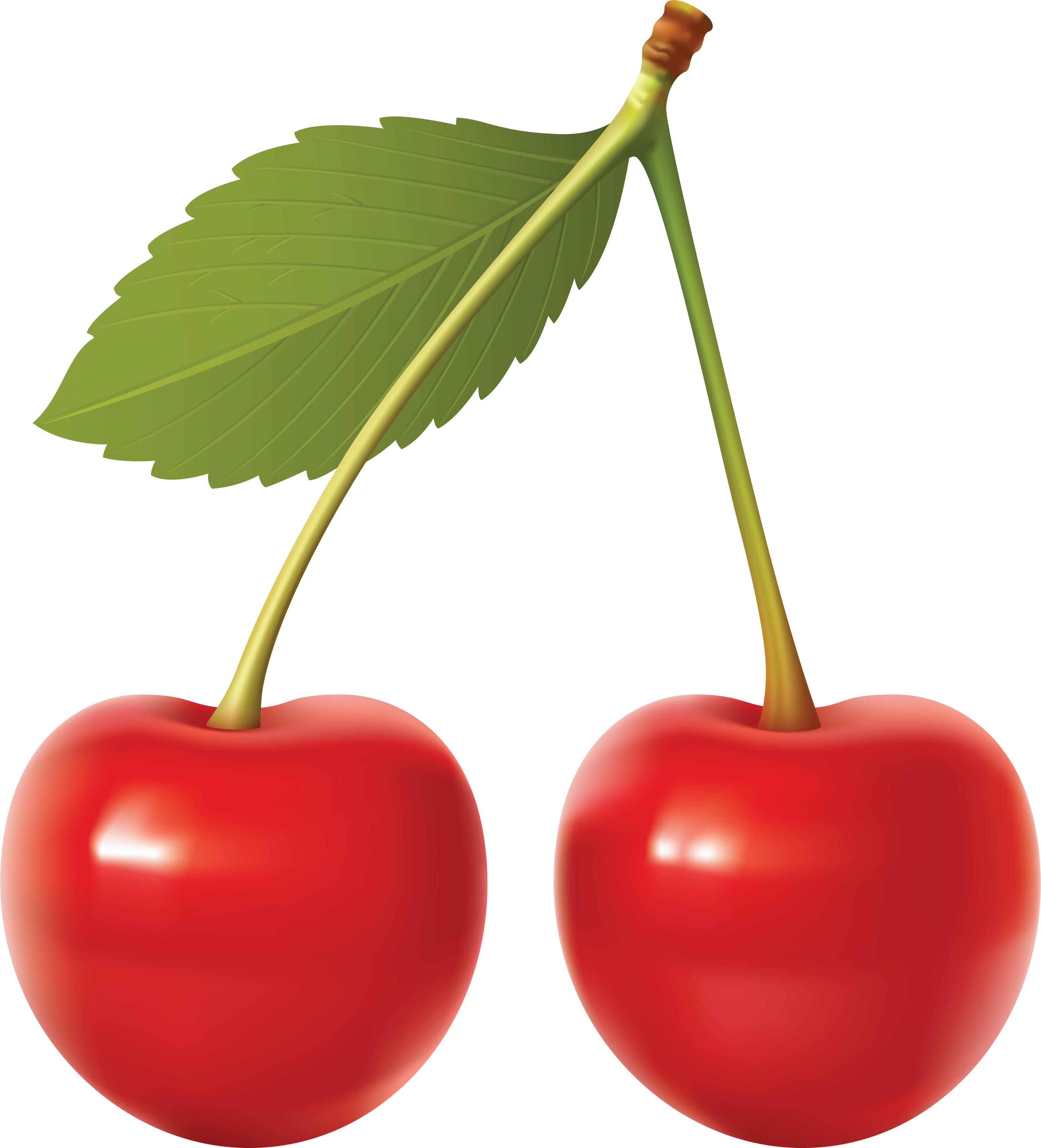 Cherry Backgrounds on Wallpapers Vista