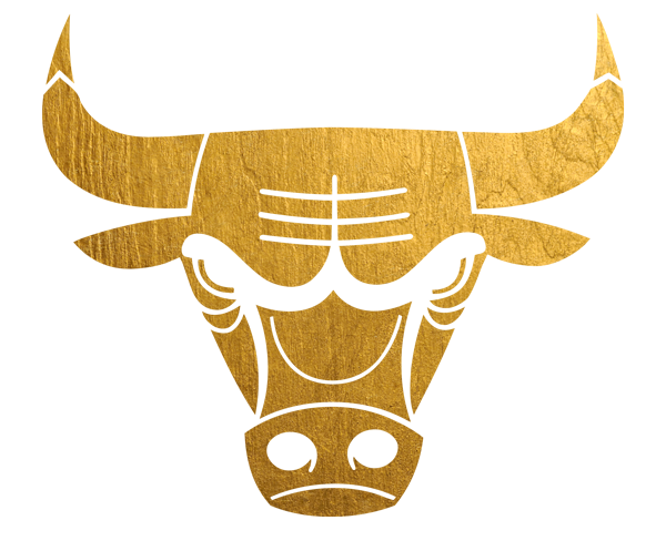 HQ Chicago Bulls Wallpapers | File 425.39Kb