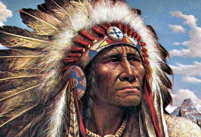 Chief High Quality Background on Wallpapers Vista