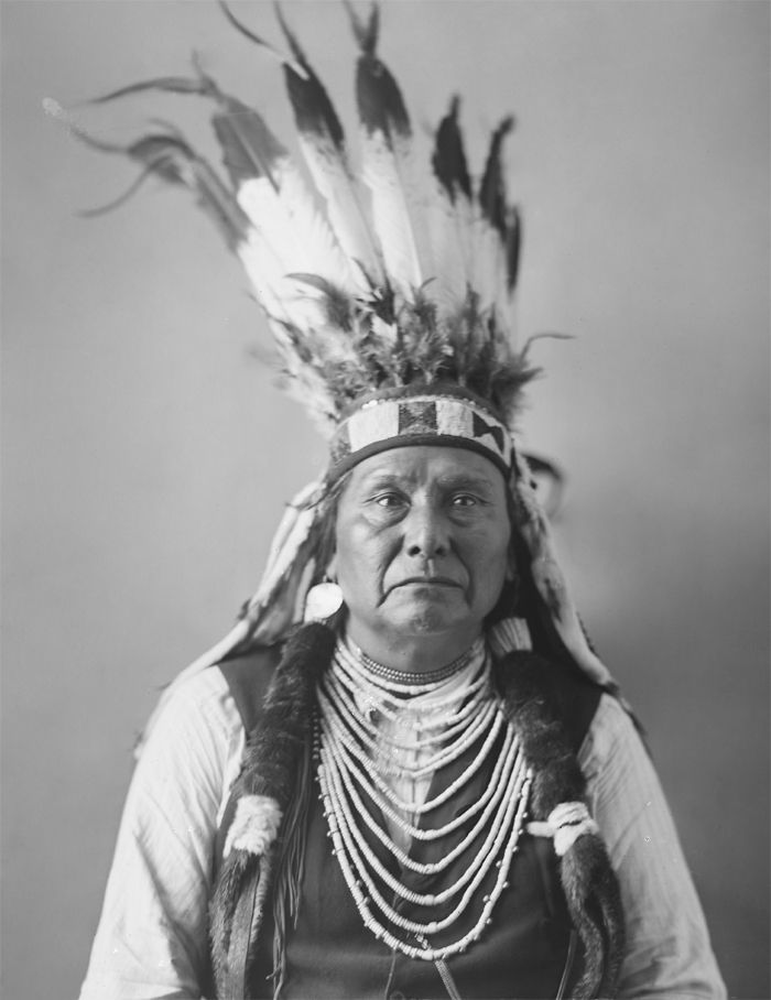 Images of Chief | 700x908